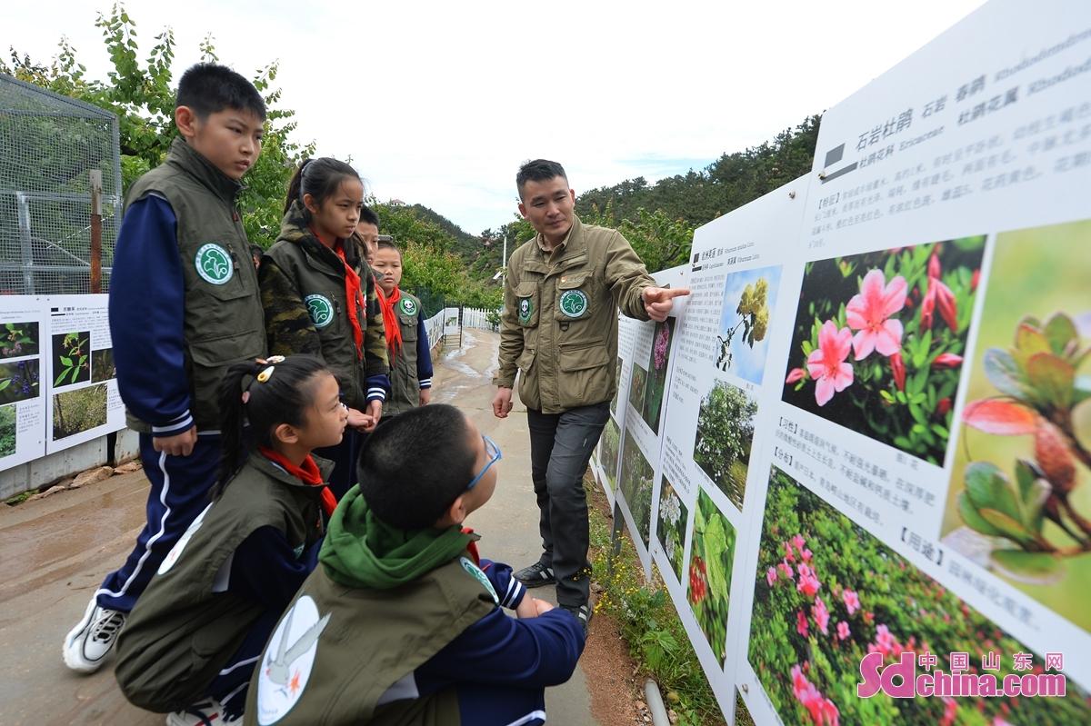 <br/>  在青岛市城阳区野生动植物保护站,科普老师通过展板为小志愿者们讲解植物保护的重要性。<br/>