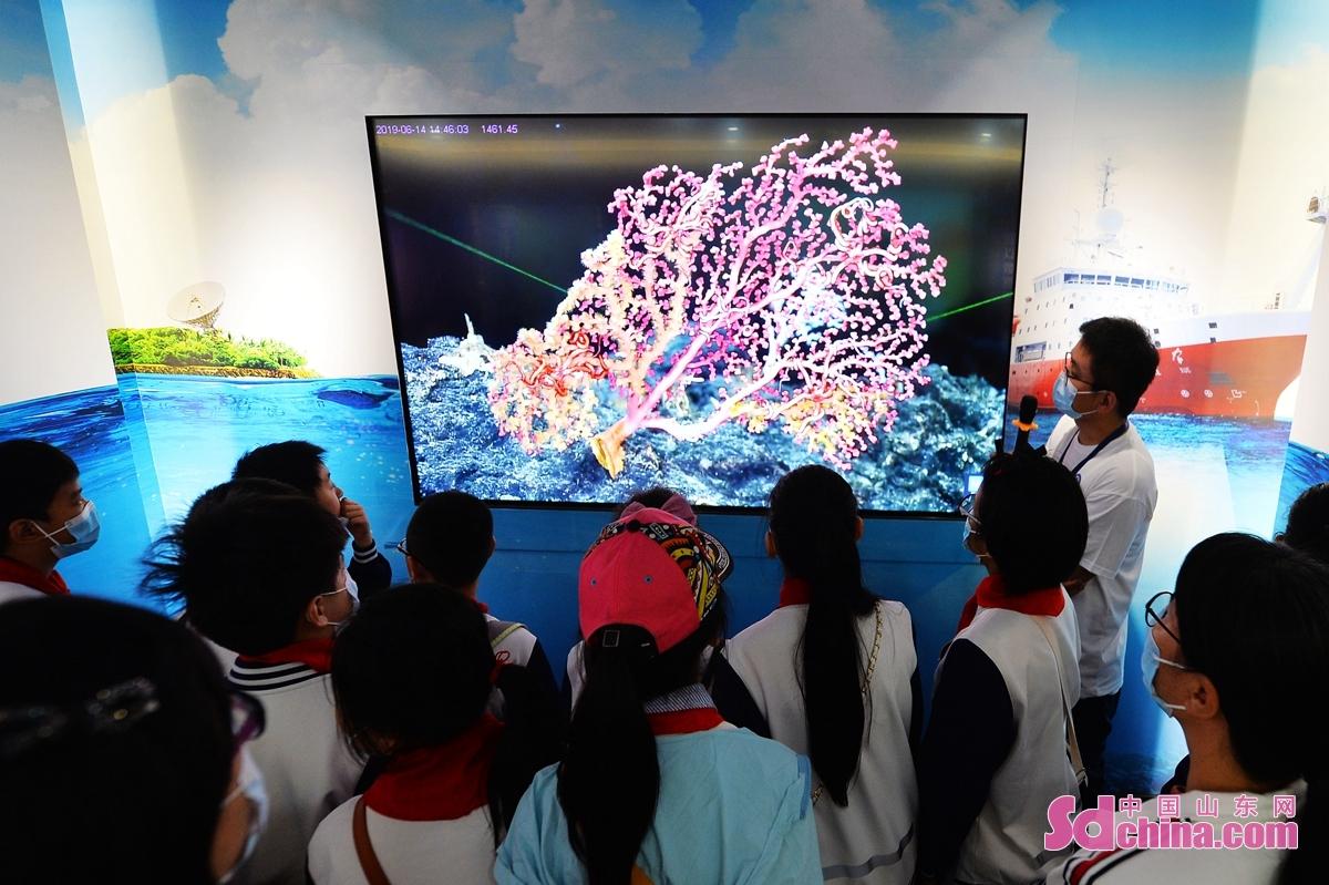 <br/>  中科院海洋研究所科研人员为学生们科普海洋生物知识。