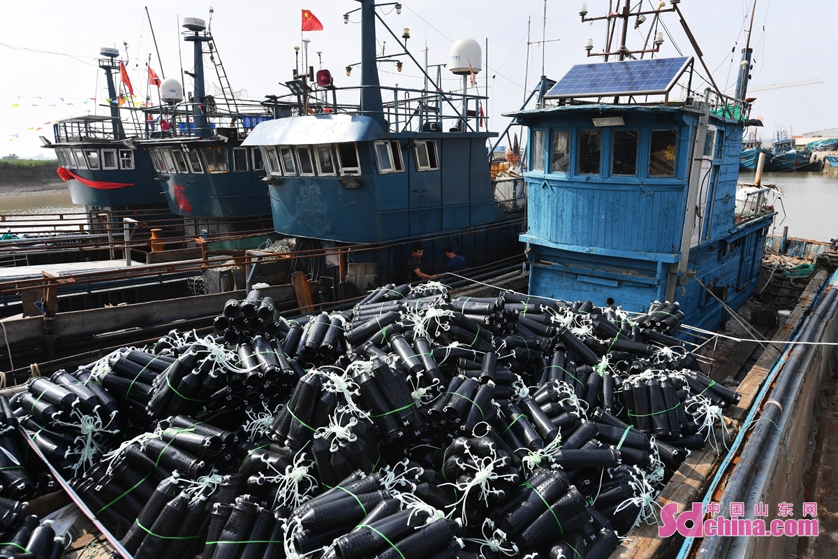 <br/>  2021年8月24日、今年の休漁期が終了まであと1週間があり、山東省青島市城陽区に位置する漁船整備工場のスタッフは働いている。