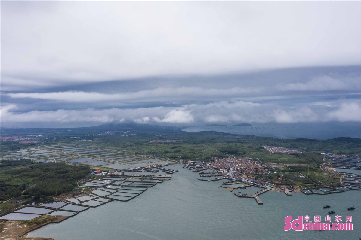 Photo taken on August 31, 2021 shows a wide range of breeding pools in the bay of Langya Town in Qingdao city, E China&rsquo;s Shandong province, showing a magnificent view of sea in Qingdao. (Photo by Han Jiajun)<br/>