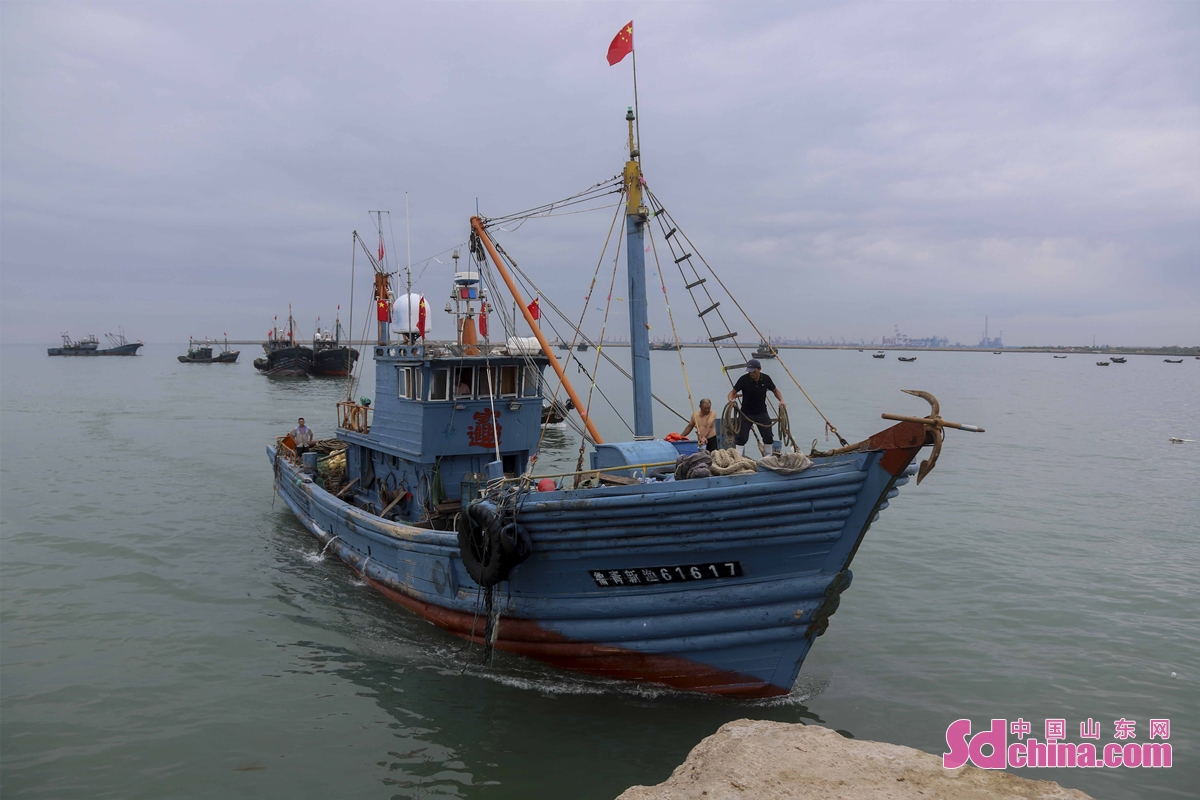 On the afternoon of September 1, 2021, fishermen at Xiyangjiawa fishing port in Langya Town, West Coast New Area of Qingdao, E China&rsquo;s Shandong province, harvested a large number of fat fish, crabs and seafood as the four-month summer fishing moratorium in the Yellow Sea and Bohai Sea ends on September 1, 2021. When the fish, crabs and seafood are brought back to the port, citizens and tourists flock to the port to buy them. (Photo by Han Jiajun)<br/>