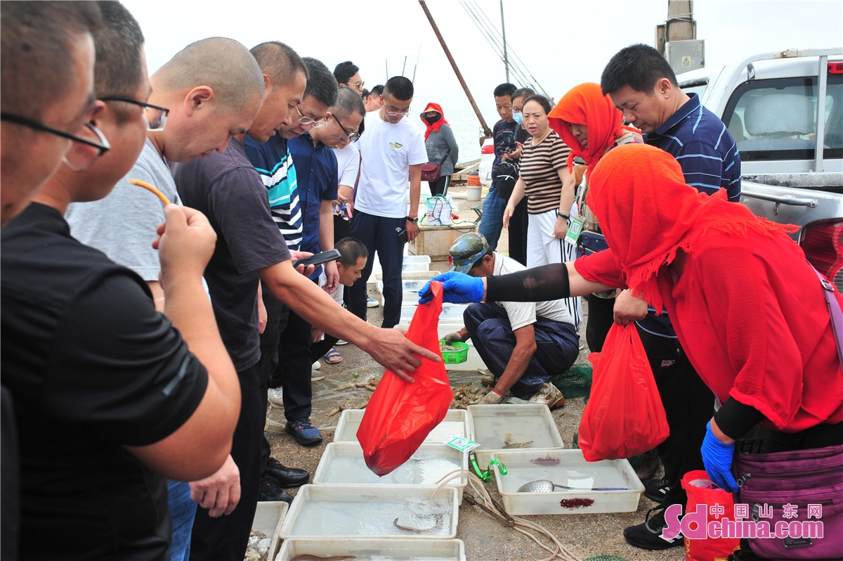 Residents in Hongdao fishing port in Chengyang District of Qingdao city, East China's Shandong Province, are busy buying the freshest seafood as the four-month summer fishing moratorium in the Yellow Sea and Bohai Sea ends on September 1, 2021.(Photo by Wang Haibin)<br/>$CW:Page=}Residents in Hongdao fishing port in Chengyang District of Qingdao city, East China's Shandong Province, are busy buying the freshest seafood as the four-month summer fishing moratorium in the Yellow Sea and Bohai Sea ends on September 1, 2021.(Photo by Wang Haibin)<br/>