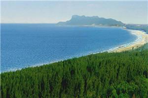 聚焦沿海防护林:绿色水库 保持水土保护农田