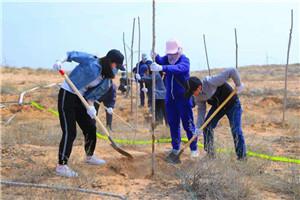 植树造林 国土绿化 保护生态