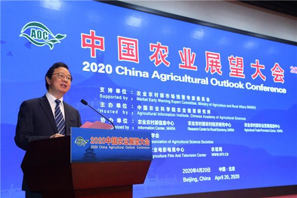中国农业展望报告出炉 农产品供给有保障