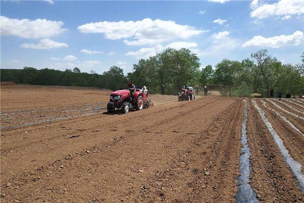 今年春耕三大亮点 春耕早稻面积增加超预期