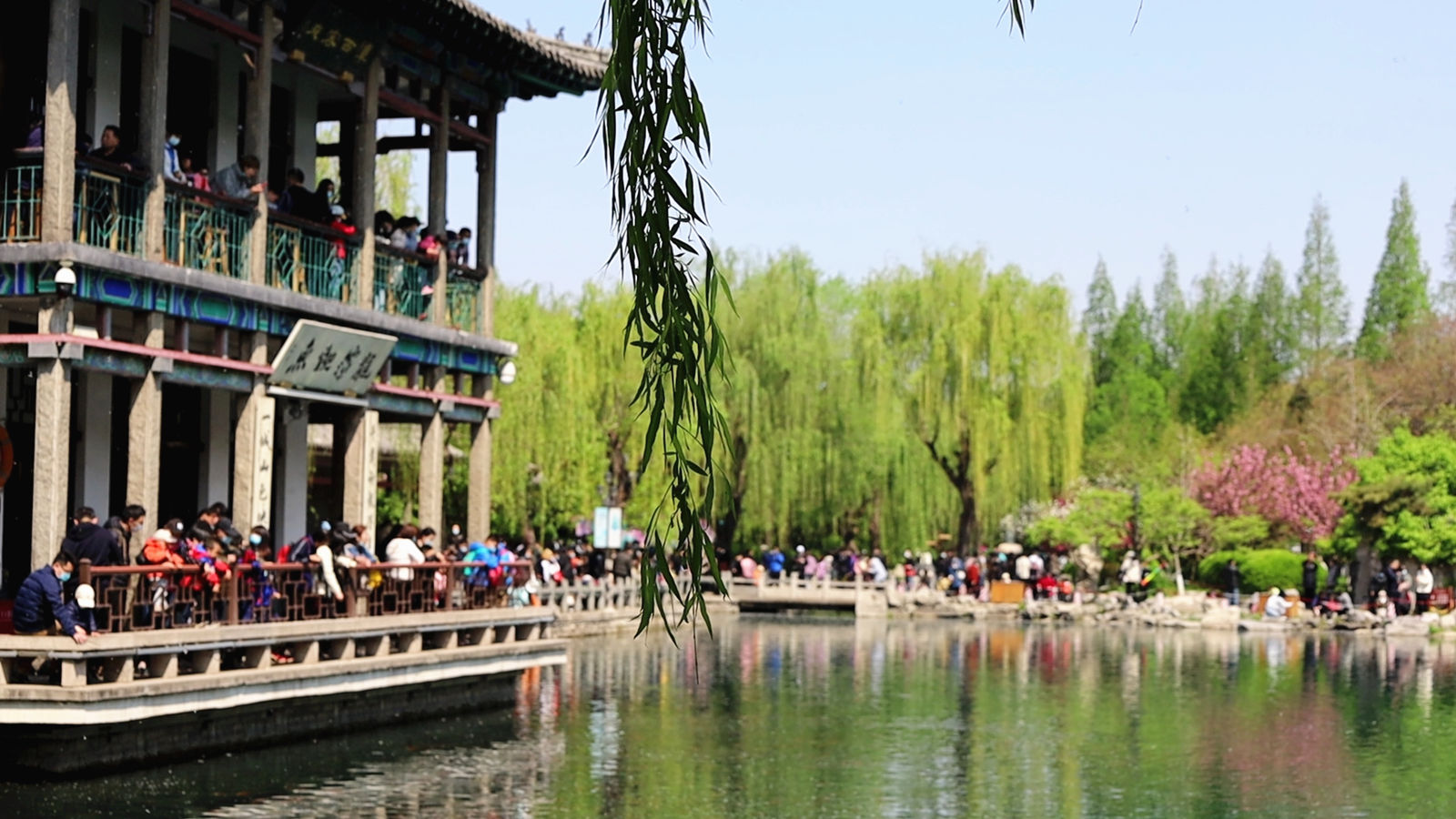 Jinan: Five Dragon Pool Park attracts many tourists in Qingming Festival holiday