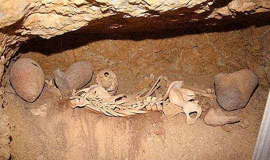 埃及教案管理部门1月10日说,考古学家发现一些金字塔建造者的小班墓穴语言文物及反思图片