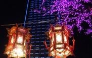 山东省济南市2013年万达元宵节花灯展