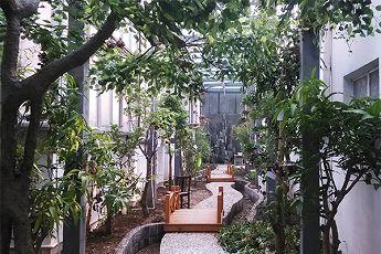 """济南现首个校园""""生态园"""" 孩子足不出校便可种热带水果"""
