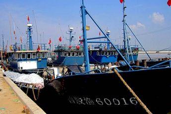 休渔期今结束 青岛5000多艘渔船蓄势待发(图)