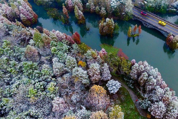 南京:雪中紫金山风景如画