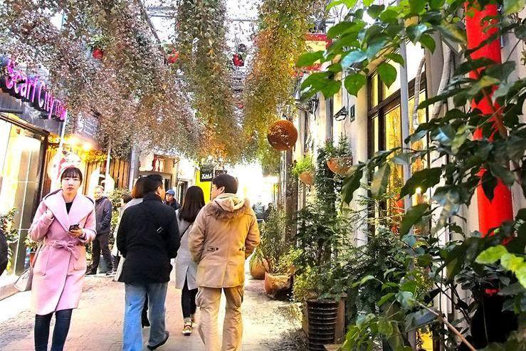上海:弄堂花廊 见缝插绿