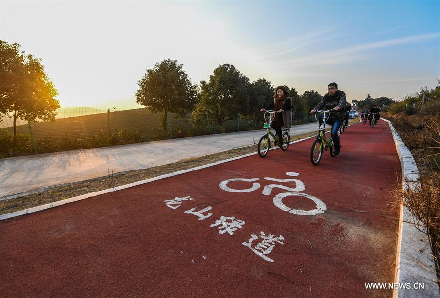 Photo taken on Dec. 21, 2017 shows people riding bikes on a road in Changxing County, east China's Zhejiang Province. In the past five years, China has seen 1.28 million km of rural roads built or renovated, with 99.24 percent of townships and 98.34 percent of villages connected by asphalt or cement roads. (Xinhua/Xu Yu)<br/>