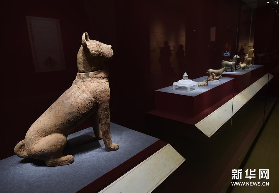 1月5日,东汉陶坐狗(左)等文物在展厅展出。新华社记者孙参摄<br/>