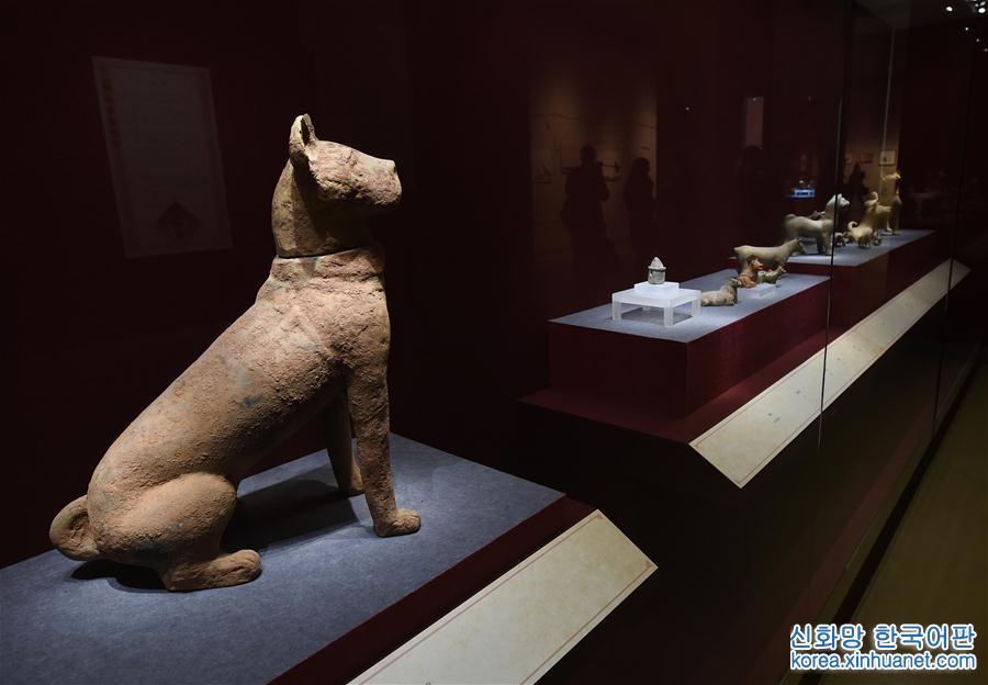 난징박물원 무술년 기념 &amp;lsquo;행운의 개&amp;rsquo; 犬문화재전 개최<br/>