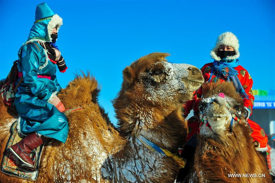 Herdsmen ride camels to take part in a camel beauty contest in Sunite Right Banner, north China's Inner Mongolia Autonomous Region, Jan. 9, 2018. A camel fair, a local traditional festival including camel race and camel beauty contest, was held in the Banner on Tuesday. More than 200 camels took part in the fair. (Xinhua/Peng Yuan)<br/>