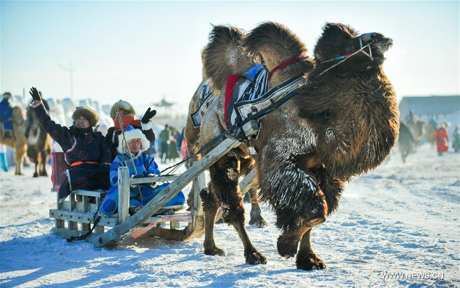 Herdsmen take a camel-sled to attend the camel fair in Sunite Right Banner, north China's Inner Mongolia Autonomous Region, Jan. 9, 2018. A camel fair, a local traditional festival including camel race and camel beauty contest, was held in the Banner on Tuesday. More than 200 camels took part in the fair. (Xinhua/Peng Yuan)<br/>