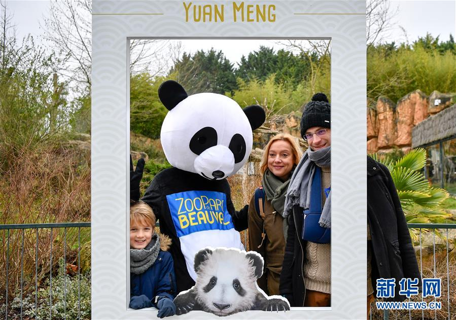 1月13日,在法国圣艾尼昂市博瓦勒野生动物园,游客与装扮成熊猫的工作人员合影。<br/>