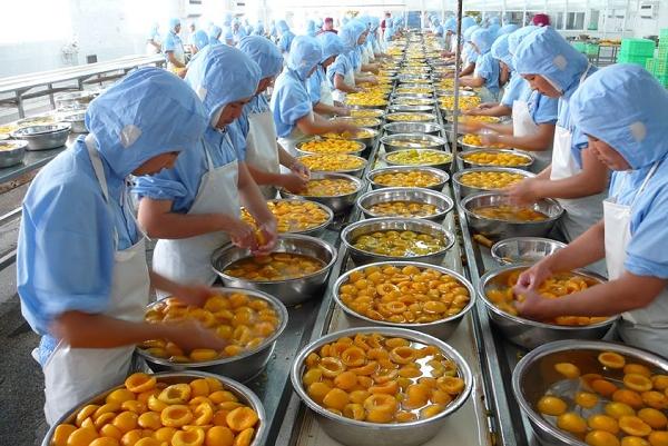 2017年山東省の農産物輸出額が1100億元を超え