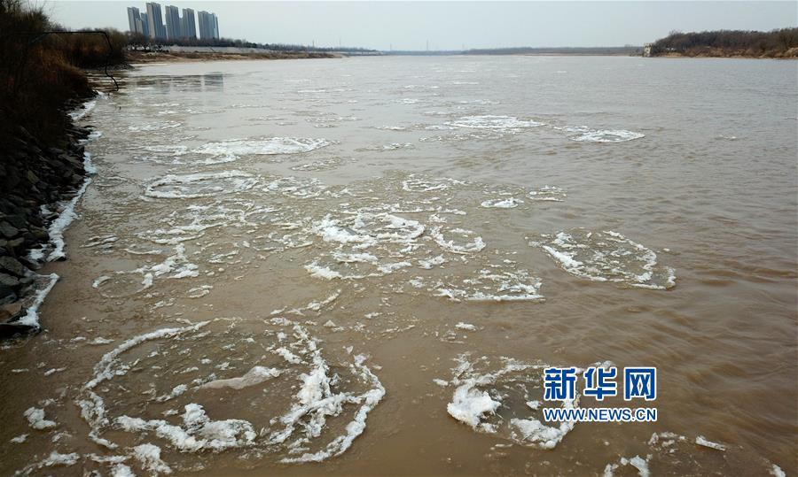 1月26日,在黄河济南段,大块冰凌在河面上流淌。