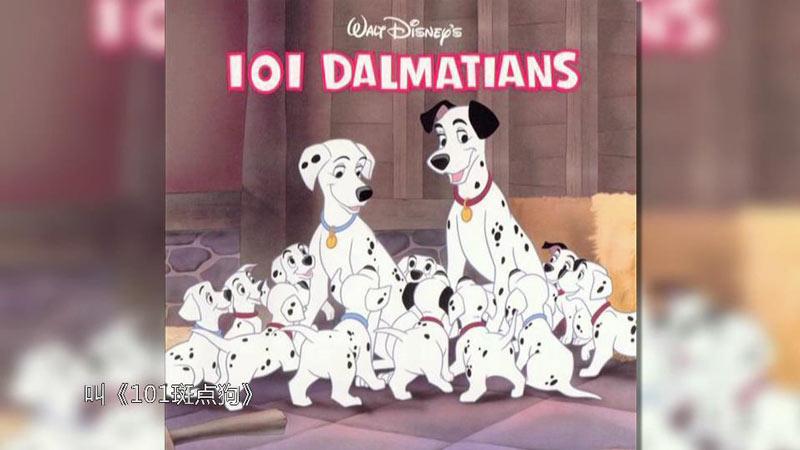 动画片《101斑点狗》