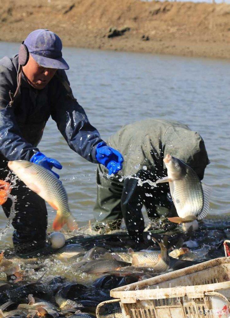 据悉,当地村民利用石膏矿塌陷地形搞起了养鱼副业,并成立了合作社,年终分红让他们走上了致富路。<br/>