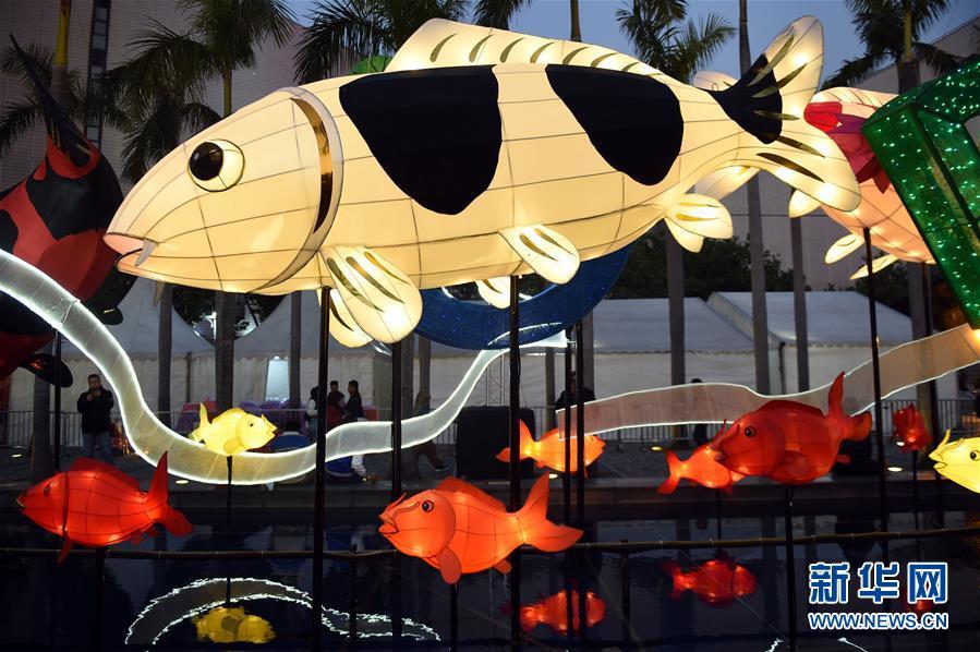 2월 12일 설맞이 채색등 전시회가 홍콩문화센터 노천광장에서 개최되었습니다.<br/>  채색등 전시회는 &quot;금리(비단잉어)&quot;를 주제로 90여개에 달하는 색채가 아름답고 형태가 다양한 비단잉어 조형 채색등을 전시해 짙은 설맞이 분위기를 마련했습니다.<br/>  사진: 신화사 노병휘(盧炳輝)<br/>