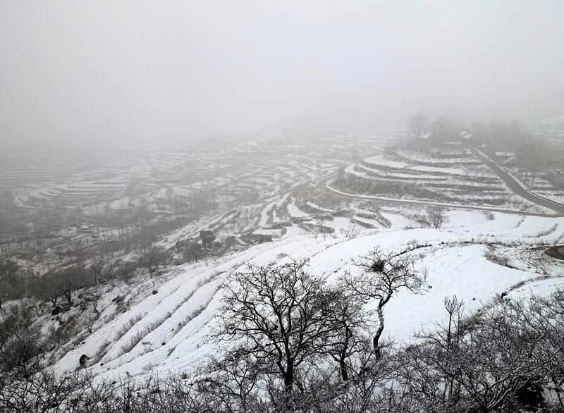 <br/>  2月21日,枣庄市山亭区迎来一场春雪,山乡处处银装素裹。<br/>