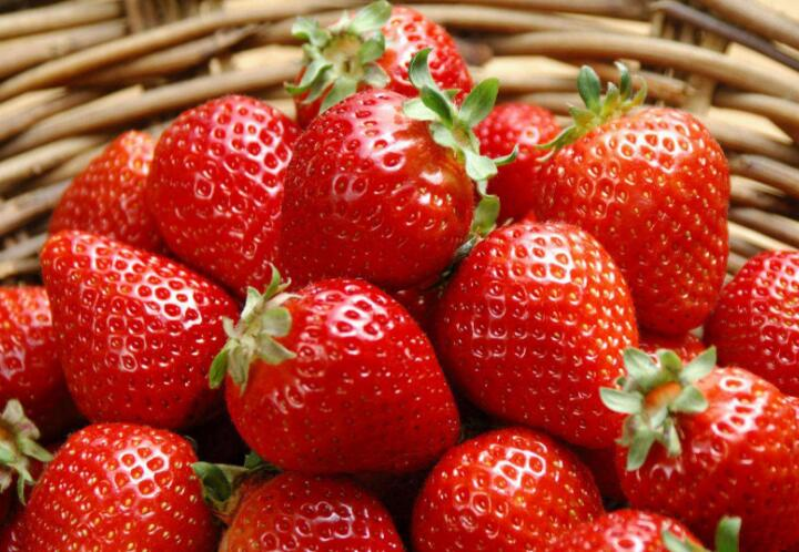 红红草莓送健康