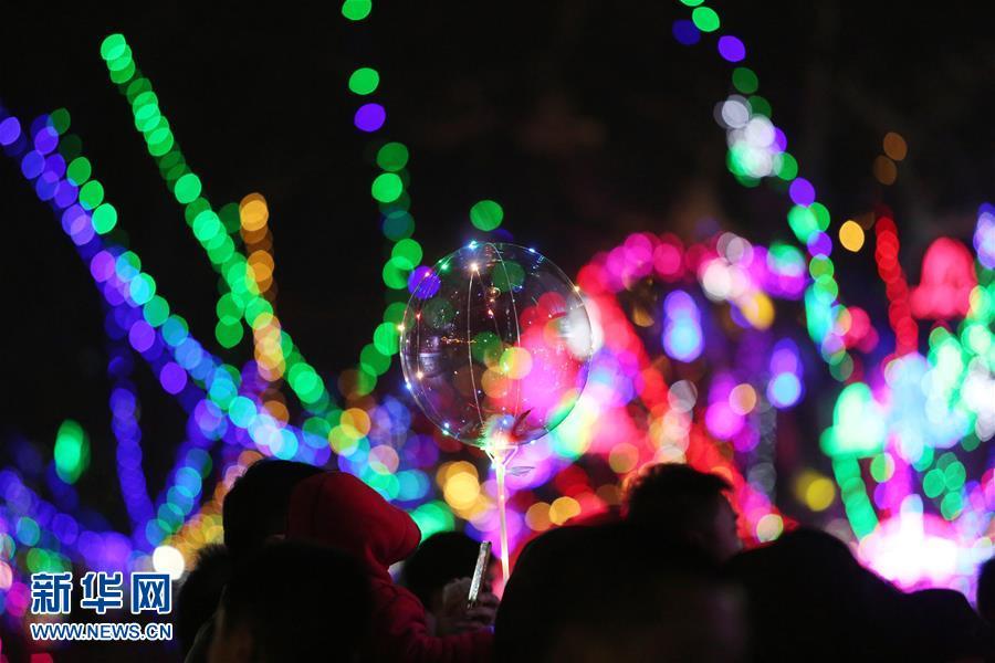 2月25日,游客在山东省临沂市郯城县一景区观赏彩灯。