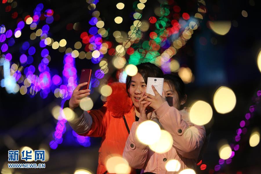2月25日,游客在山东省临沂市郯城县一景区观赏彩灯。<br/>
