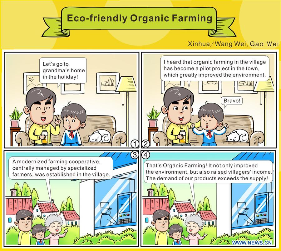 The comic strip shows a family conversation on eco-friendly organic farming. China's annual political sessions of the National People's Congress (NPC) and the National Committee of the Chinese People's Political Consultative Conference (CPPCC) are scheduled to convene in March, 2018. During the two sessions, development agendas will be reviewed and discussed, and key policies will be adopted. Year 2018 marks the first year of fully implementing the spirit of the 19th National Congress of the Communist Party of China, which vowed to pursue the vision of innovative, coordinated, green, and open development that is for everyone. The CPC congress stressed that building an ecological civilization is vital to sustain the Chinese nation's development, &quot;we must realize that lucid waters and lush mountains are invaluable assets.&quot; (Xinhua/Wang Wei, Gao Wei)<br/>