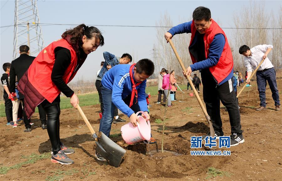 <br/>  3月11日,在山东省枣庄市光明路街道篑子村田间,小朋友孙皓铭(中)和父母一起栽植树苗。