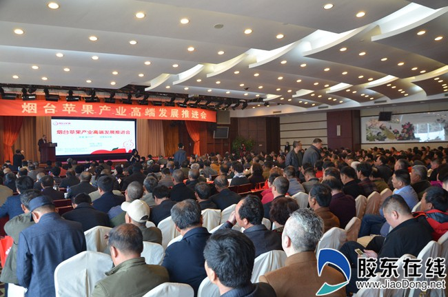 Yantai apple industry seeks high-end development