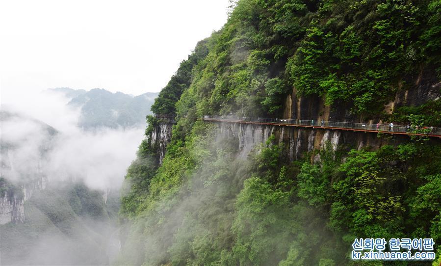 #(环境)(2)云雾缥缈景如画