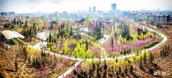 森林城市.jpg