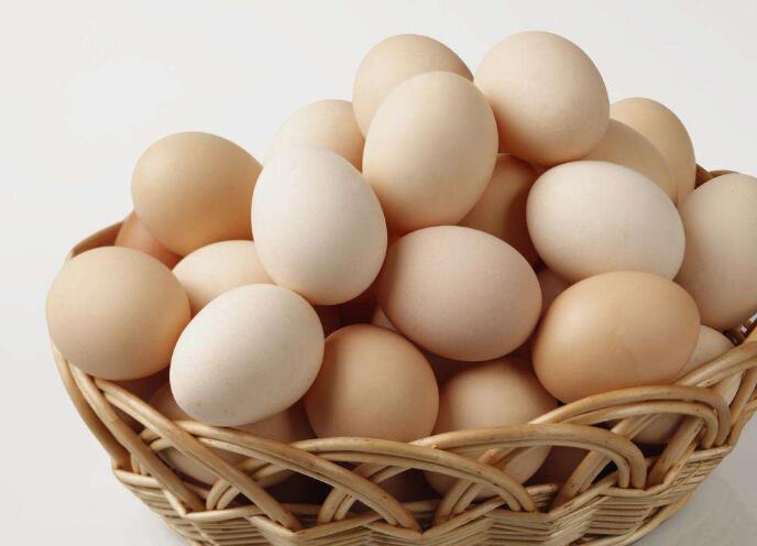 食用长斑鸡蛋会引起食物中毒?专家:不!