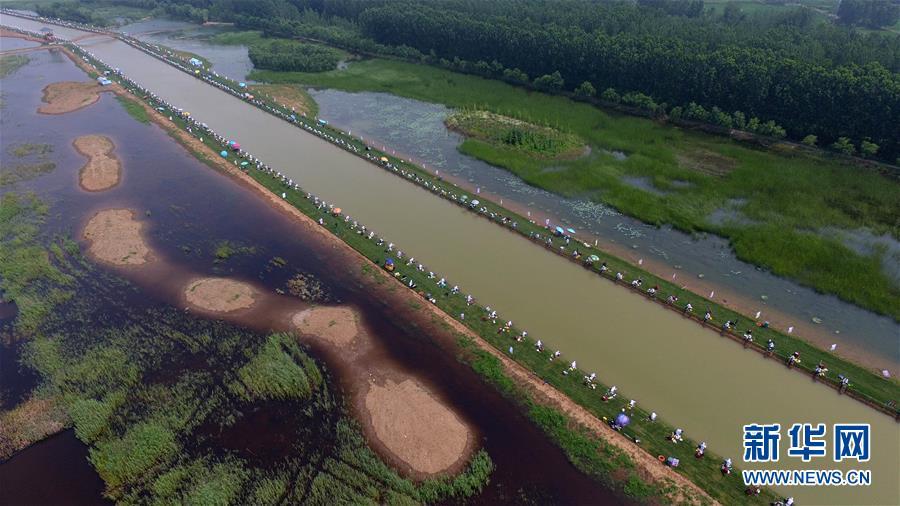 7月1日,选手在山东枣庄市台儿庄运河湿地休闲垂钓中心参加河钓大赛(无人机拍摄)。<br/>