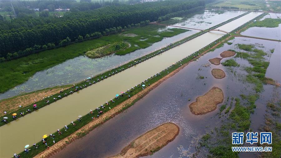 7月1日,选手在山东枣庄市台儿庄运河湿地休闲垂钓中心参加河钓大赛(无人机拍摄)。