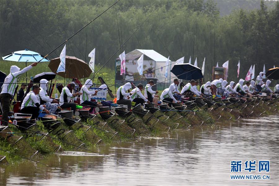 <br/>  7月1日,为期两天的2018年中国大运河(台儿庄)河钓大赛在京杭大运河畔的山东枣庄市台儿庄运河湿地休闲垂钓中心举行,来自全国各地的400支代表队、800名垂钓爱好者同场竞技,享受户外活动带来的快乐。<br/>