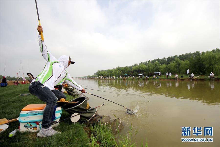 7月1日,选手在山东枣庄市台儿庄运河湿地休闲垂钓中心参加河钓大赛。<br/>
