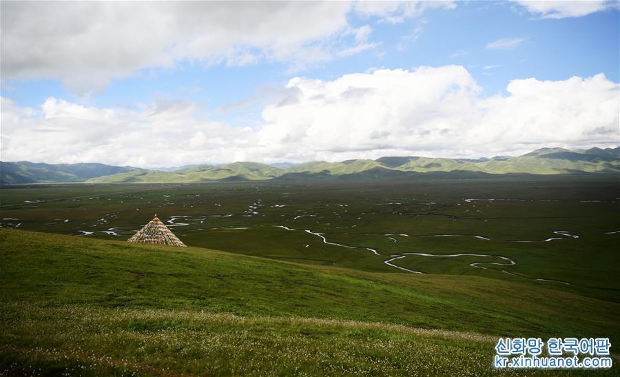 이곳은 마취(瑪曲)현 아완창(阿萬倉) 습지다.(7월 31일 촬영) 간쑤(甘肅)성 간난티장족자치주(甘南藏族自治州) 마취현은 황허(黃河) 상류의 중요한 수원 보급 지역이다. 최근 몇 년간, 간난황허중점수원보급생태기능지역의 생태보호와 건설을 지속적으로 추진함으로써 마취 습지의 생태 기능이 차츰 회복되였다. 생태 환경이 아름다운 마취 습지는 간난이 전역관광을 발전시키는 중요한 목적지로 되었다. [촬영/신화사 기자 천빈(陳斌)]<br/>