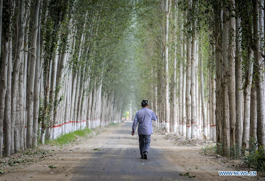 A man walks on a road in a village under Hotan City, northwest China's Xinjiang Uygur Autonomous Region on June 6, 2018. As an important link of the Silk Road Economic Belt, Xinjiang is speeding up the development of transportation and logistics to connect east and west. By the end of 2017, the total length of roads in Xinjiang reached 186,000 km, with 4,578 km of expressways. (Xinhua/Zhao Ge)<br/>