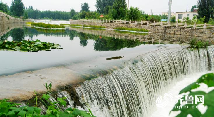 """努力构筑""""水清、面洁、流畅、岸绿""""的水环境,为河道周围的居民创造了生态宜人的自然空间和生活休闲空间。"""