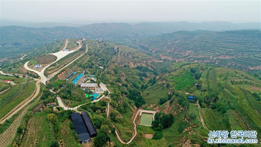 구위안(固原)시 위안저우(原州)구 기름용 모란 생산기지(8월28일 드론 촬영). 닝샤 구위안시 위안저우구는 허촨향의 황폐한 산을 이용해 2014년에 빈곤지원 선두기업 닝샤 루이저우위안여우모란산업유한회사를 유치했다. 모란씨 기름(모란유)을 생산하는 이 회사는 &amp;lsquo;리더기업+기지+과학연구소+합작사+농가&amp;rsquo;의 형식으로 기름용 모란 생산기지를 건설해 모란씨 기름과 모란꽃 차 가공 등 관련 산업을 발전시켰다. 300여명의 빈곤 주민이 모란 생산기지에 취업해 소득을 증대시켰다. 기지는 또 산을 개조하고 생태환경을 복원했다. [촬영/신화사 기자 왕펑(王鵬)]<br/>