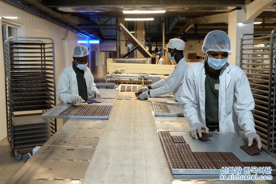 10월 25일, 노동자가 가나 테마산업단지 내의 니스 코코아&amp;middot;초콜릿 가공공장에서 생산라인에 놓인 초콜릿을 정리하고 있다. &amp;lsquo;코코아의 고향&amp;rsquo;으로 불리는 가나는 코트디부아르 버금으로 가는 글로벌 제2대 코코아 수출국이다. 코코아는 가나의 가장 중요한 경제작물이고 코코아 수출은 가나 재정수입의 중요한 원천이다. 이번 수입박람회에 참석한 가나의 가장 중요한 주체로서 가나 코코아관리국 및 코코아와 관련된 상&amp;middot;하류 기업이 상하이를 방문했다. [촬영/ 신화사 기자 자오수팅(趙姝婷)]<br/>