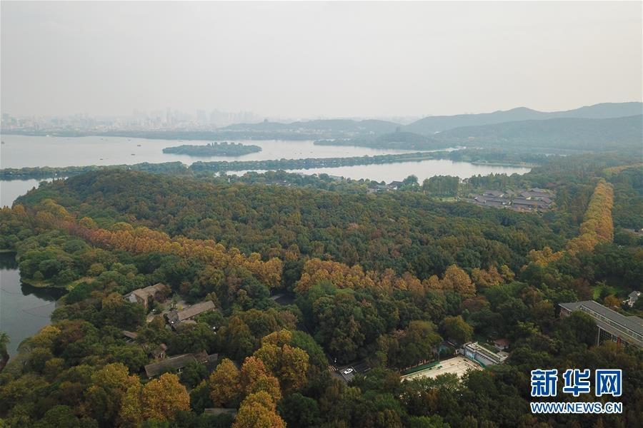 11월 13일 드론으로 촬영한 항저우 시후(西湖)호 관광지의 모습[촬영: 신화사 황쭝즈(黃宗治) 기자]