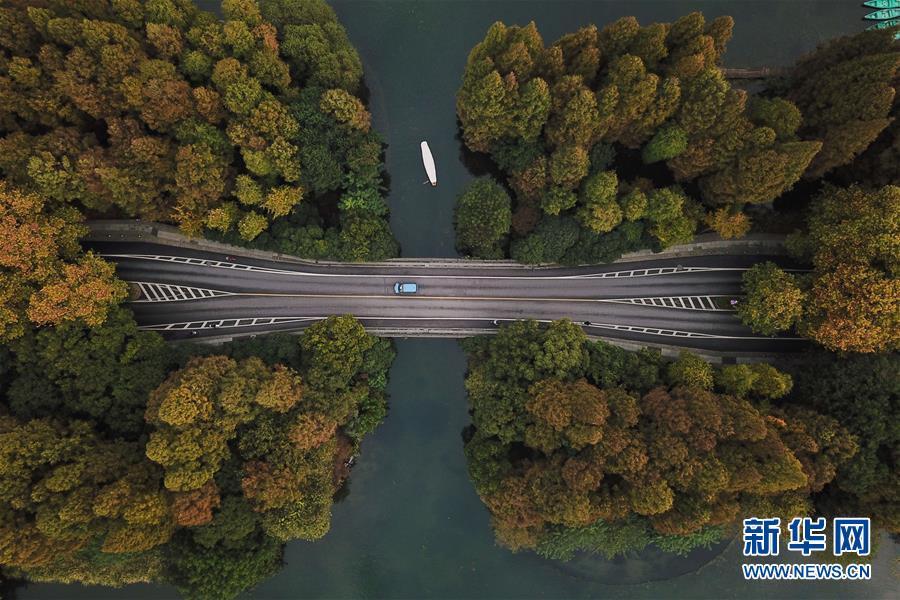 11월 13일, 유람선이 항저우 시후(西湖)호를 달리고 있다. (드론 촬영) [촬영: 신화사 황쭝즈(黃宗治) 기자]<br/>