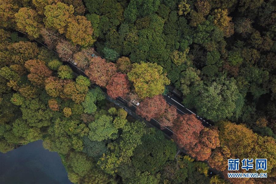 11월 13일 드론으로 촬영한 항저우 시후(西湖)호 관광지의 모습[촬영: 신화사 황쭝즈(黃宗治) 기자]<br/>